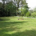 Unser Hintergarten